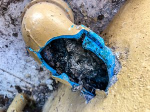 black forest sewer line repair